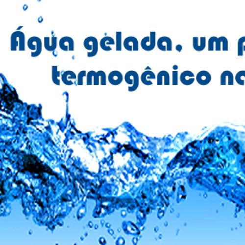 Água Gelada – Um termogenico natural ótimo para emagrecer