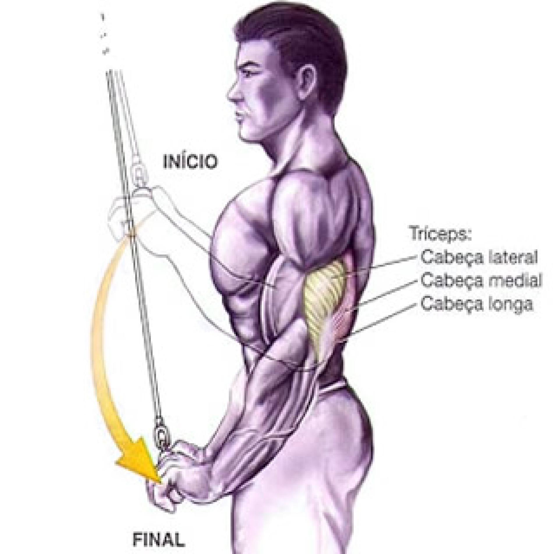 Exercícios para Tríceps – Puxador