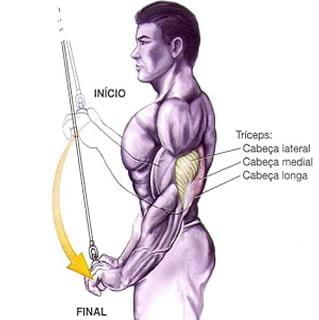 treino triceps puxador