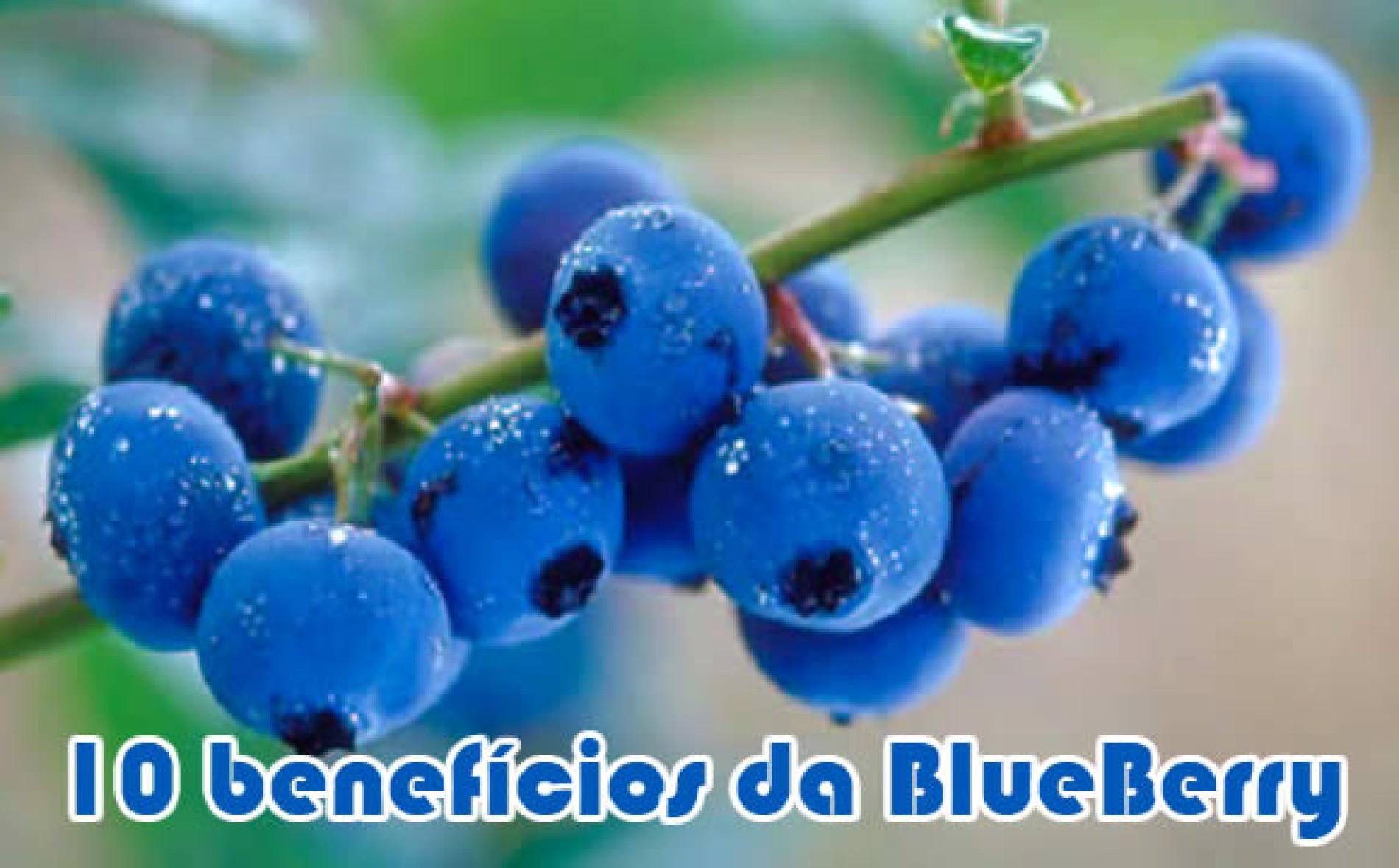 10 benefícios da blueberry e como é boa para emagrecer