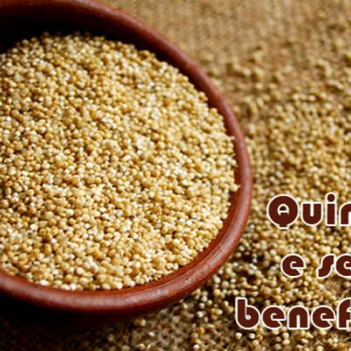 Conheça a quinoa e seus benefícios