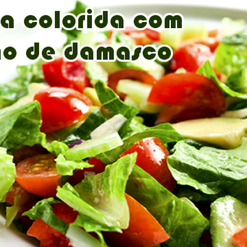 Salada colorida com molho de damasco light