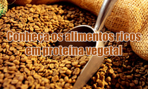 Veganos – Outras boas fontes de proteínas que não seja de origem animal