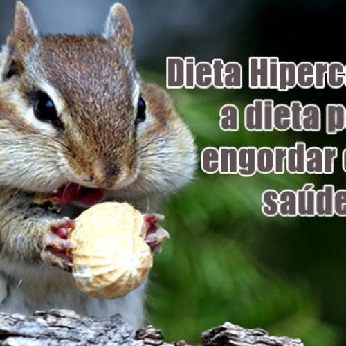 Dieta para engordar com saúde – Dieta Hipercalórica