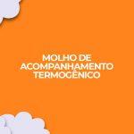receita molho termogenico acompanhamento dieta fitness