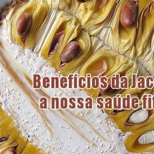 Jaca e seus cinco melhores benefícios para nossa saúde
